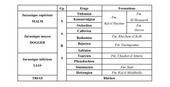 Différents termes du Jurassique en Tunisie centrale