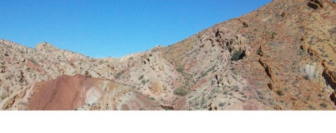 Trias du Jebel Rhéouis
